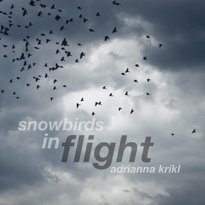 Snowbirds In Flight - Adrianna Krikl