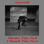 AmortE - Under the Pall I Smell the Past
