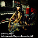 Bobby Bunny's Adventures in Magnetic Recording Vol.1