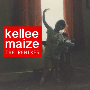 Kellee Maize - The Remixes: In the Night Remix
