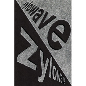 Xylowave 2012.  Front view of insert.