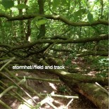 Stormhat — Field and Track