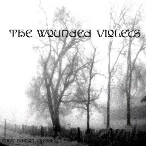 The Wounded Violets
